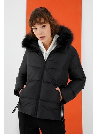 Z Giyim Mont Siyah